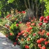 way_turlar_otel_4_kiyi_26